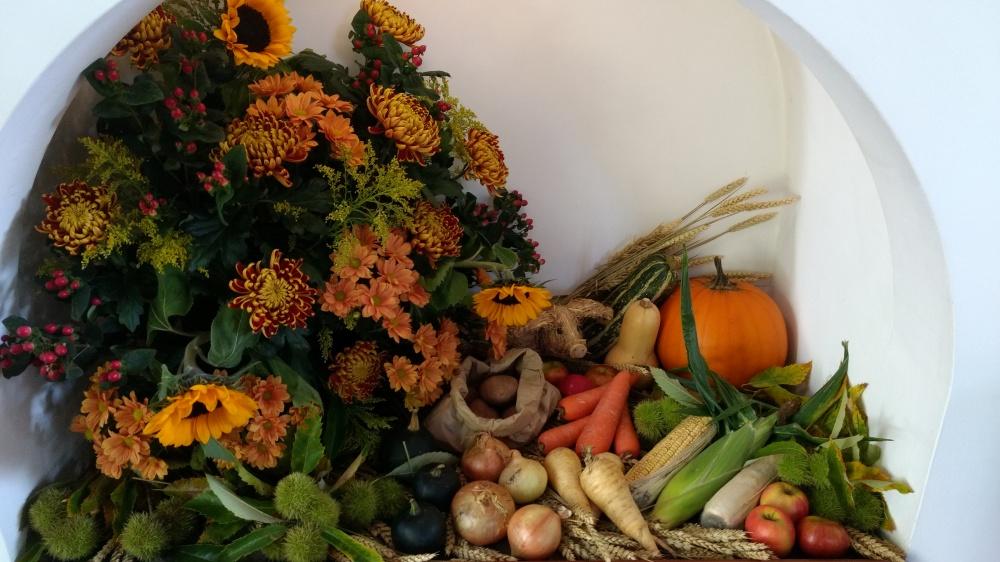 Cotswolds Harvest 102